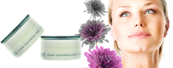 Cellular Rejuvinating Cream