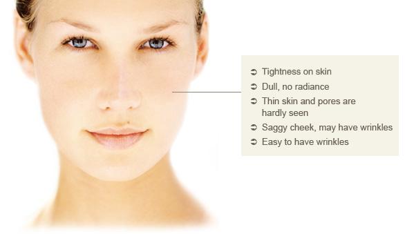 korean cosmetics for dry skin | korean beauty blog, Skeleton